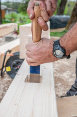 Carpenter using chisel