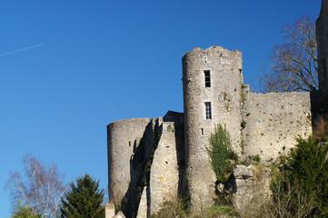Ruine du château d'Angles-sur-l'Anglin