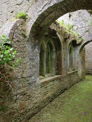 cloisters in adare, limerick