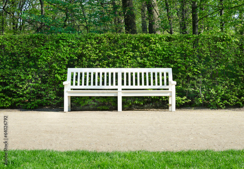 wooden benches in Lazienki park