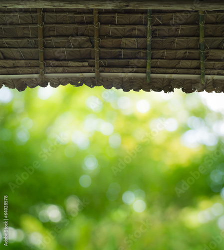view to leaf green from straw roof hut