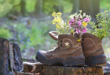 Wanderschuhe auf Baumstumpf mit Blumen
