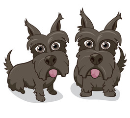 Vector illustration of cute Scottie dogs on white background