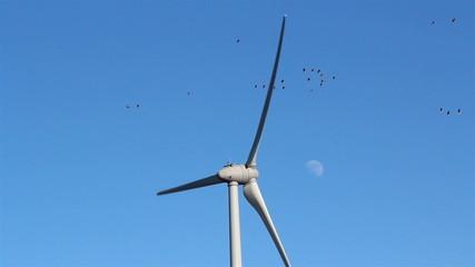 Three bladed windmill slowly turning
