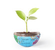 protect the environment concept earth with tree