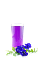 Butterfly pea juice for drink