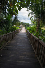 Wooden pier on tropical lake.