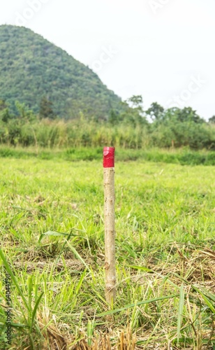 red colored wooden pole for the setting out of a Field survey