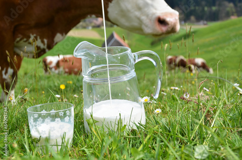 Milk and cows. Emmental region, Switzerland