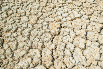 Dry soil cracking background