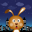 Rabbit in the city at night