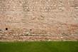 muro con prato