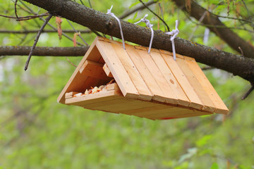 Hand made birdhouse