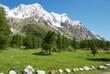 Obrazy na płótnie, fototapety, zdjęcia, fotoobrazy drukowane : Monte Bianco dalla Val Ferret