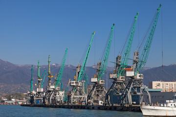 Industrial cranes in Batumi