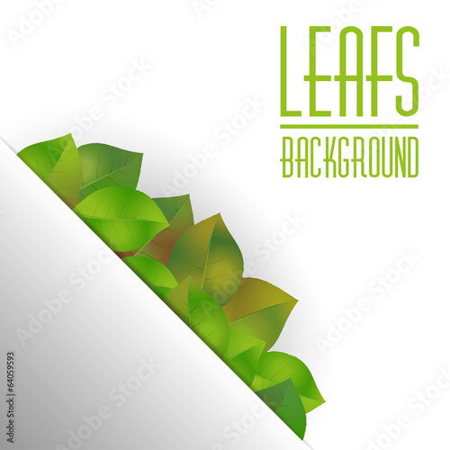 Leafs background with text