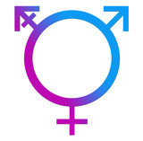 Third Gender Blue Pink Circle poster