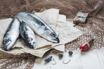 Bodegón de pesca con peces, anzuelos, sedal, boya y redes