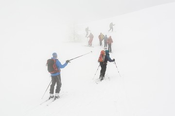 Backcountry skiers ascending in the fog