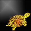 Tortue tatouage