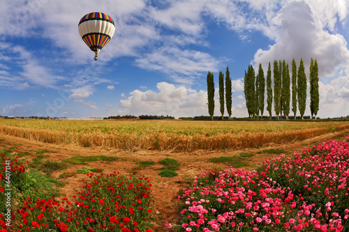 Flying over fields of balloon
