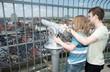 Sightseeing lookout binoculars copenhagen child tourist
