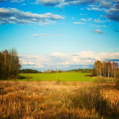 Beautiful Landscape. Belarus Countryside.