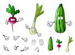 Radish, zucchini and onion vegetables