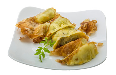 Japan dumplings - gyoza