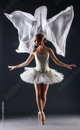 Studio shot of flexible young female ballet dancer