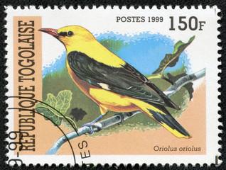 stamp printed in Togolese Republic shows bird(Oriole)