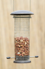 Bird feeder with peanuts