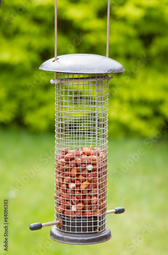 Garden bird feeder with peanuts