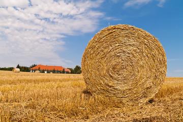 Landwirtschaft. Feld mit Strohballen