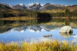 Mt. Hallet reflected in Sprague Lake at Rocky Mountain NP - 64089109