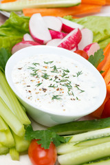 yoghurt sauce with mustard, herbs and fresh vegetables, vertical