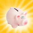 pink pig money box