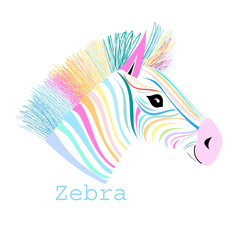 colorful portrait zebra
