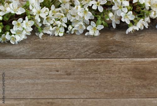 Kirschblüten Plakat