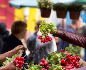 Buying radishes