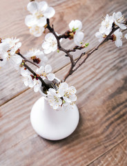 Apricot blooming brunches in the vase