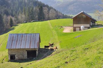 bâtiment agricole (Chartreuse)