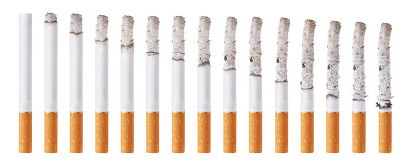 Cigarettes during different stages of burn. Isolated on white