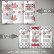 Business three fold flyer template design, corporate brochure
