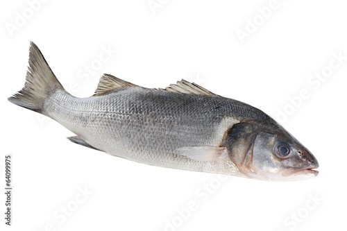 seebass isolated on white