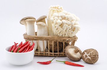 Many species of mushrooms, peppers