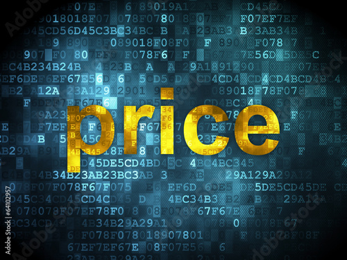 Marketing concept: Price on digital background