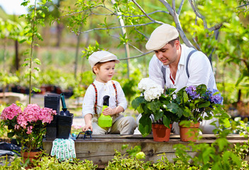 father and son care for plants in the garden