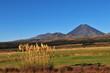 Volcan Ruapehu du Parc National du Tongariro
