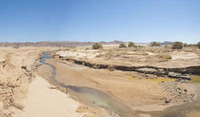 Small stream going through desert oasis